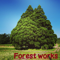 Forest Worksの仕事イメージ